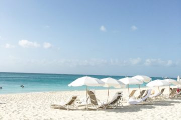turks and caicos - the palms