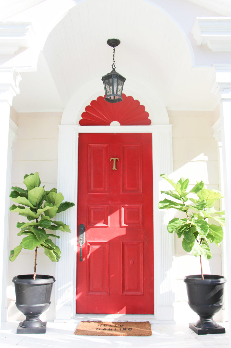 red front door with fiddle leaf fig trees